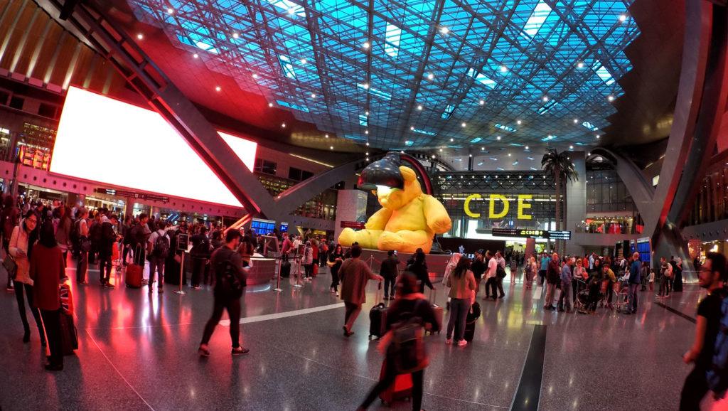 L'orso all'aeroporto di Doha