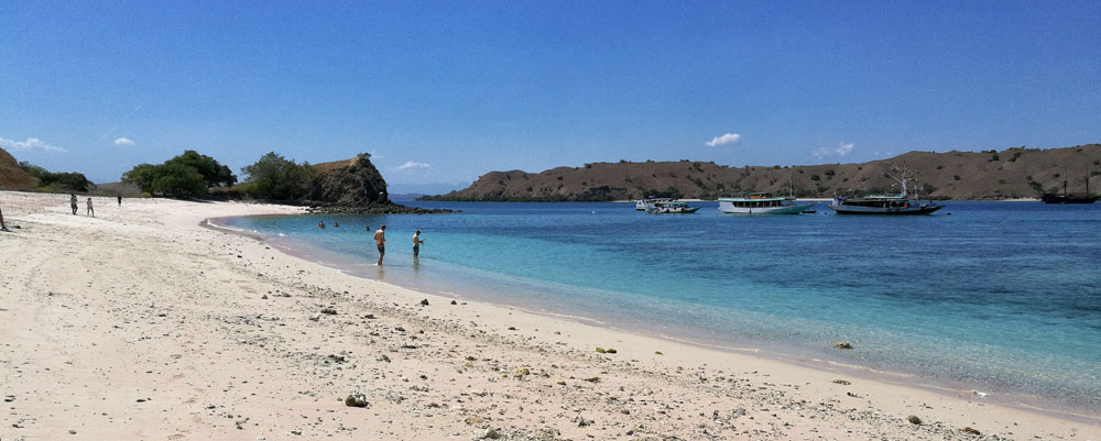 Pink Beach: Komodo National Park