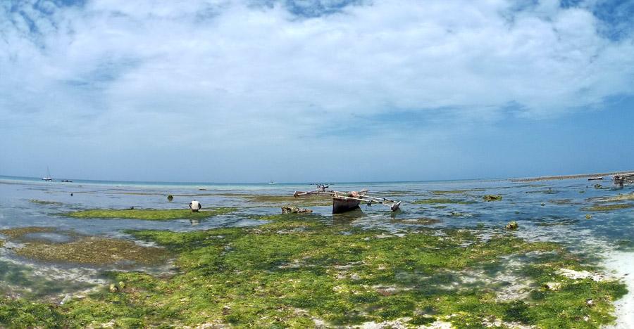 La marea a Nungwi, Zanzibar