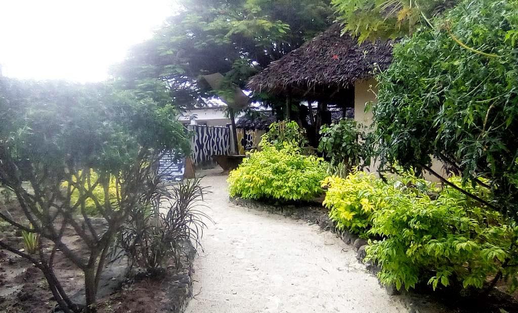 Il giardino del Cocoa Guest House