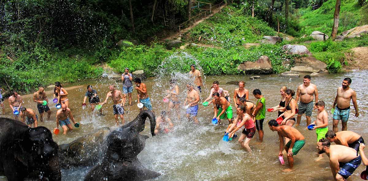 Bagno elefanti Chiang Mai, Thailandia