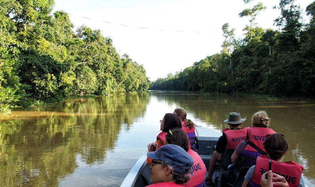 Kinabatangan Borneo