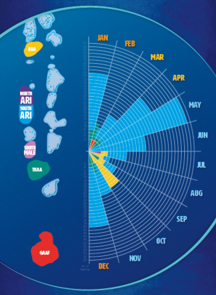 Mappa per vedere squali balena Maldive