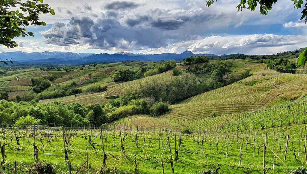 Le colline di Gattinara